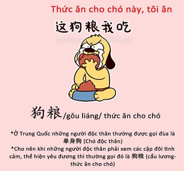 Cẩu lương có nguồn gốc từ Trung Quốc