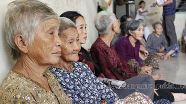 già hóa dân số vn