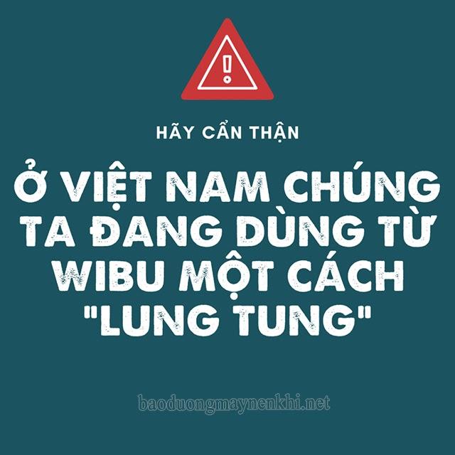 Wibu ở Việt Nam đang bị hiểu sai và dùng sai